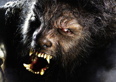 Wolfman to appear in 2009